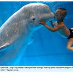 Las 100 mejores fotos de Reuters del 2007