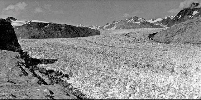 Muir-1941