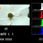 Los ajustes correctos para un histograma preciso
