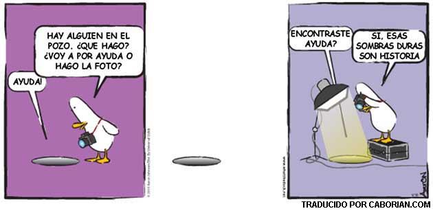 Tira de humor sobre fotografia, what the duck (en español) WTD221