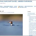 [Fotógrafos] Niall Benvie. Paul Harcourt Davies. Andrew Parkinson.