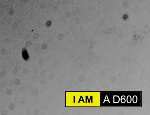 D600_dust_sensor_pro