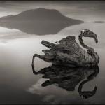 [Fotógrafos] Las postales desde el inframundo de Nick Brandt