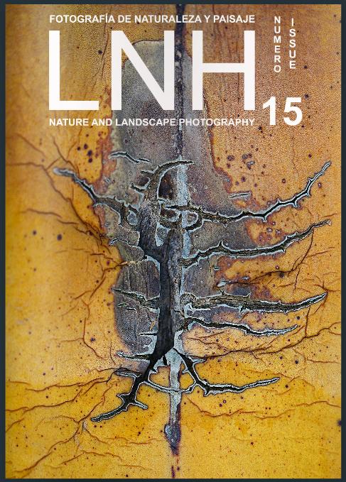 Revista LNH número 15