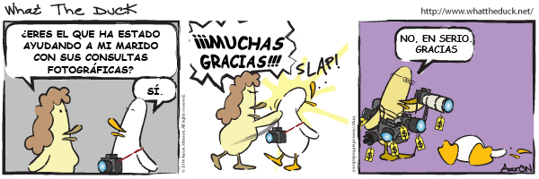 What the duck- nº1463